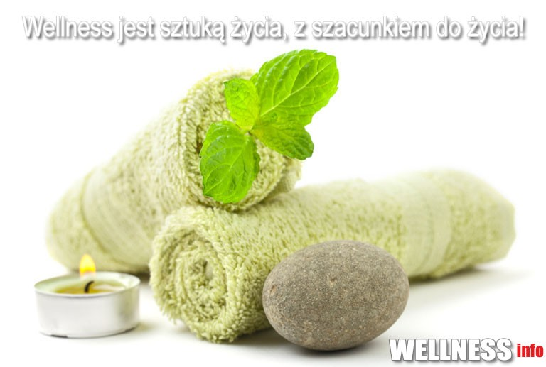 www.wellnessinfo.pl